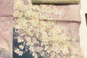 桜の、、、