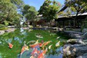 素敵な日本庭園