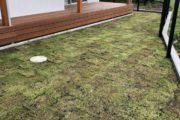 芝貼りが完了しました