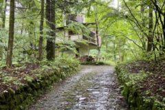 小さな森の家